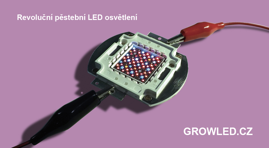 GROW_LED_pestebni_osvetleni
