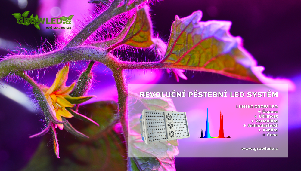 LUMINI GROW LED_pestebni_svitidlo