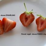 Jahody_rozdil_z_obchodu_ze_zahradky_GROW_LED_FLEXI